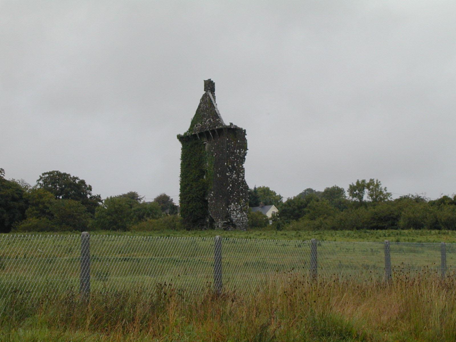 Lisgriffin Castle