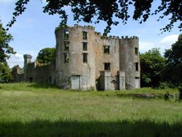 Buttevant Castle